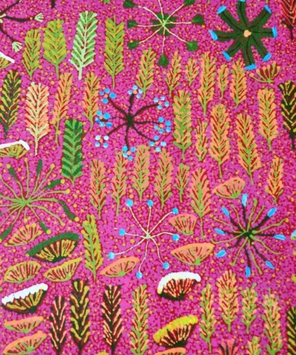 Close up detail of pink Aboriginal culture wallpaper, from Telescope Style.