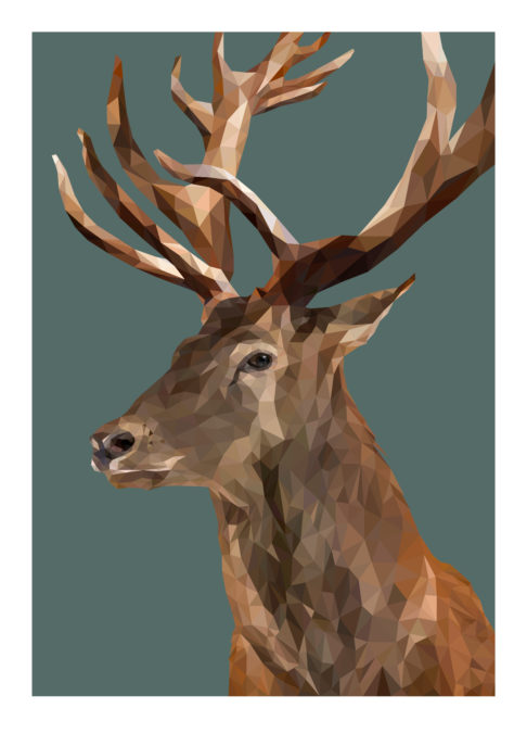 Red deer stag print with jungle teal background.