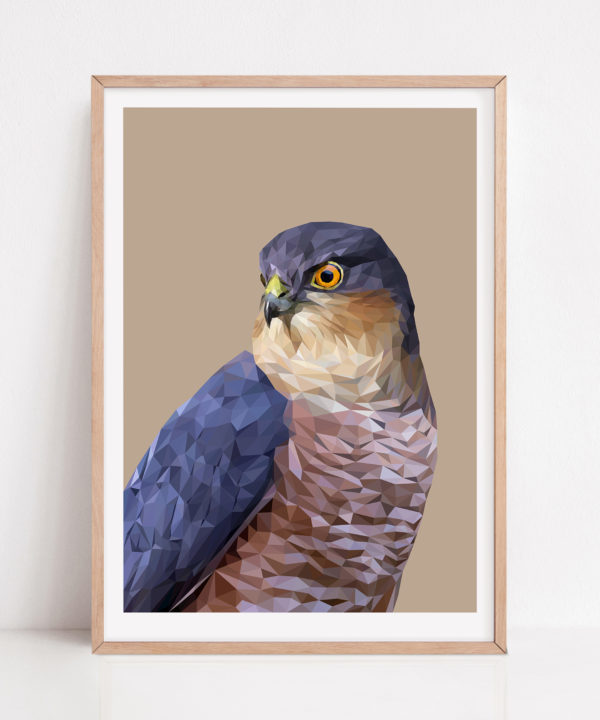 A framed fine art bird of prey drawing digital print against a beige ground with a pale wooden frame.