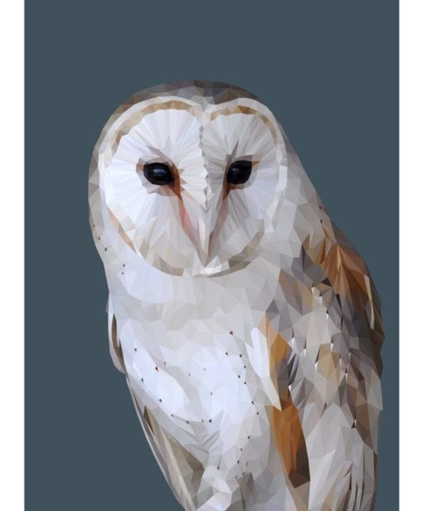 A digitally-rendered barn owl print with a dark blue background.