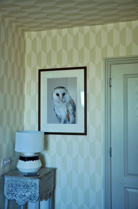 A barn owl print on a wall in the corner of a geometrica wallpapered room with a lamp on a table in the foreground.