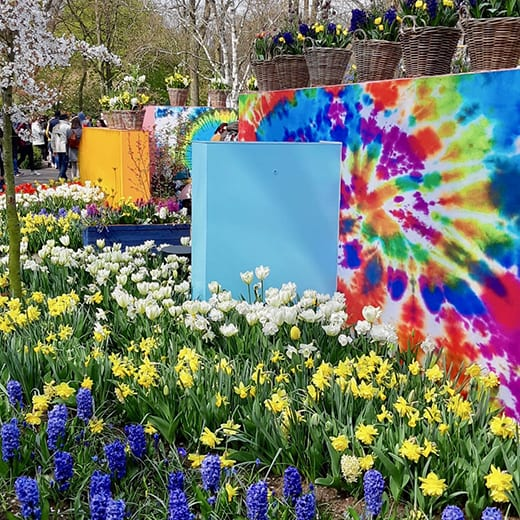 A vivid display of colour at the Keukenhof gardens in Holland, Telescope Style blog.