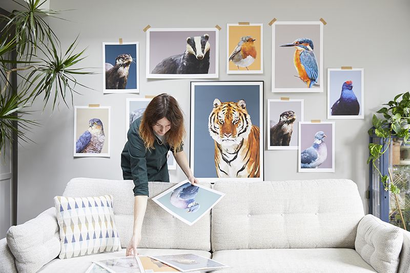 Wildlife wall art creative Talia Giles selecting pictures for an exhibition.