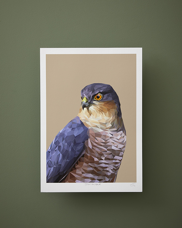 A sparrowhawk bird of prey print from the woodland wildlife art collection by Talia Giles against a deep green wall